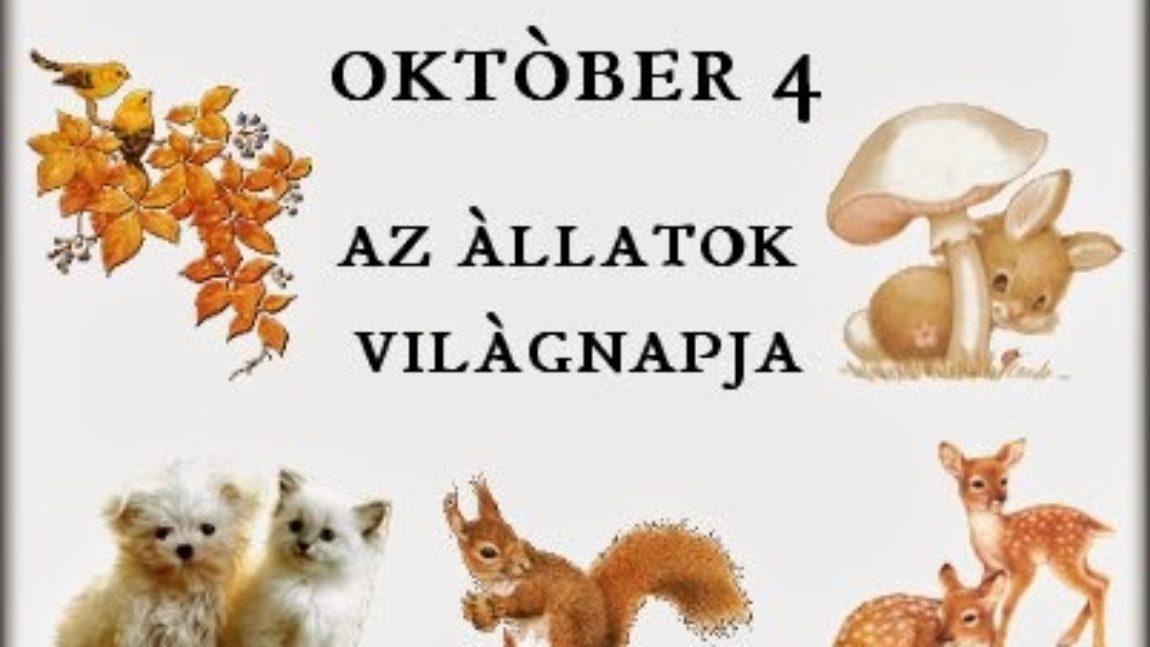 Állatok világnapja 2017.10.04.
